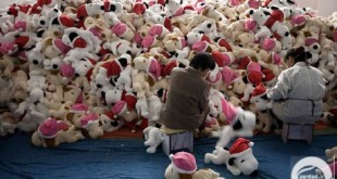 Workers perform a quality check for newly made toys at the production line of a toy factory in the suburbs of Shanghai October 31, 2008. According to the owner of the factory, where most of the production is for export to the U.S and Japan, the slowdown of about 30% in client's orders can be mainly attributed to the global financial crisis. The number of Chinese firms exporting toys overseas halved in the first seven months of 2008, compared to the year before, the General Administration of Customs said on Monday. REUTERS/Nir Elias (CHINA)